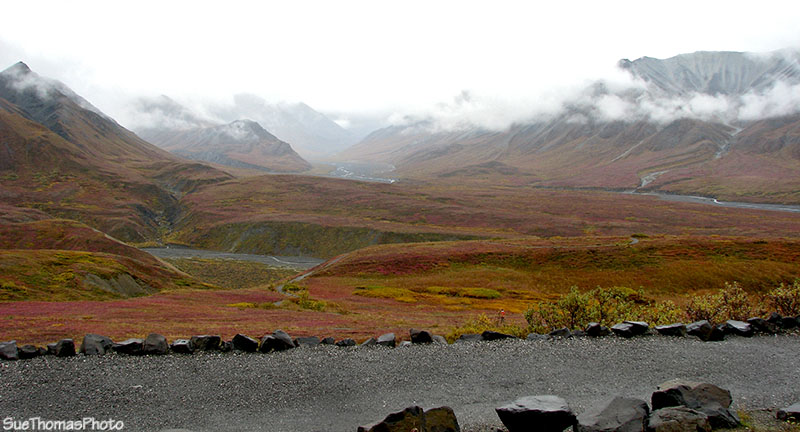 Eielson Visitor Center in the cloud, Denali, Alaska