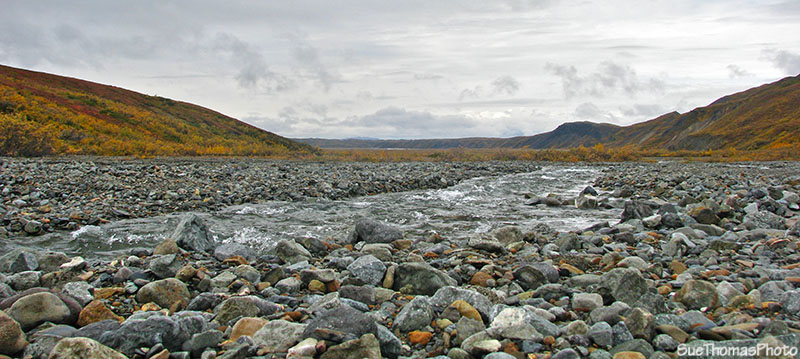 River in Denali National Park, Alaska