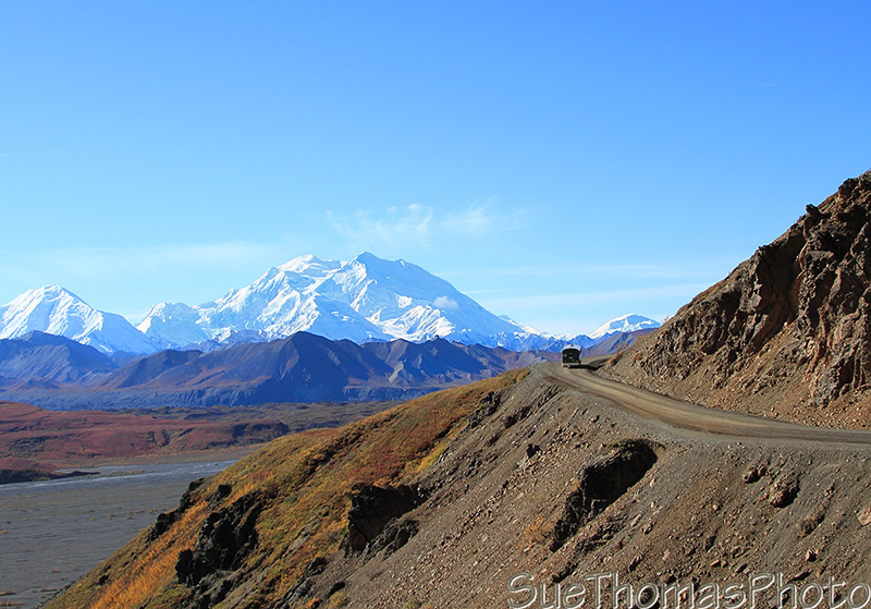 Green school bus tour of Denali Park