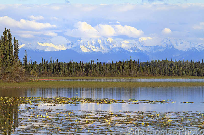 Deadman Lake campground on Alaska Highway