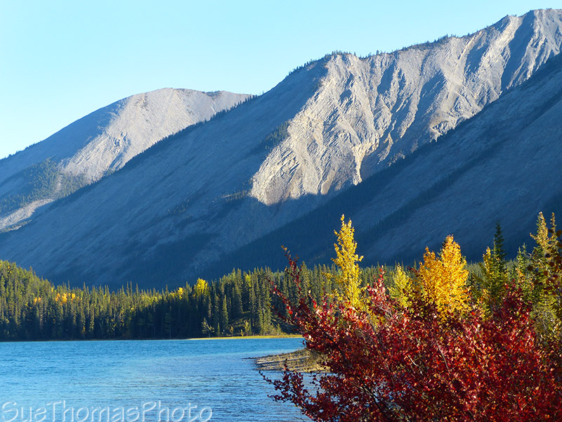Muncho Lake fall colours and mountains