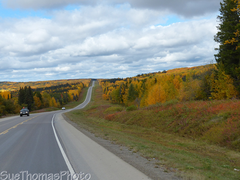 Alaska Highway fall colours