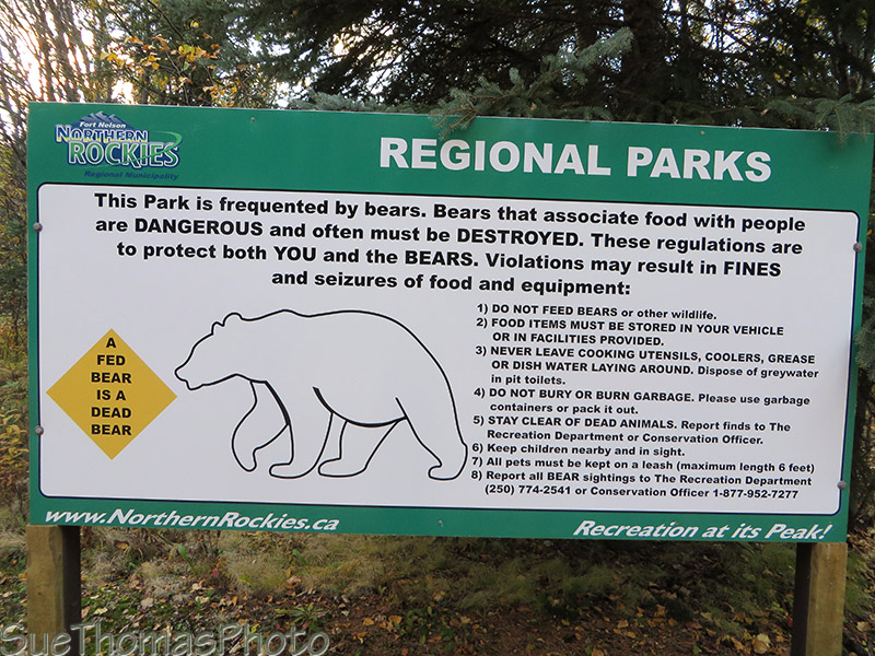 Tetsa River - beware of bear sign