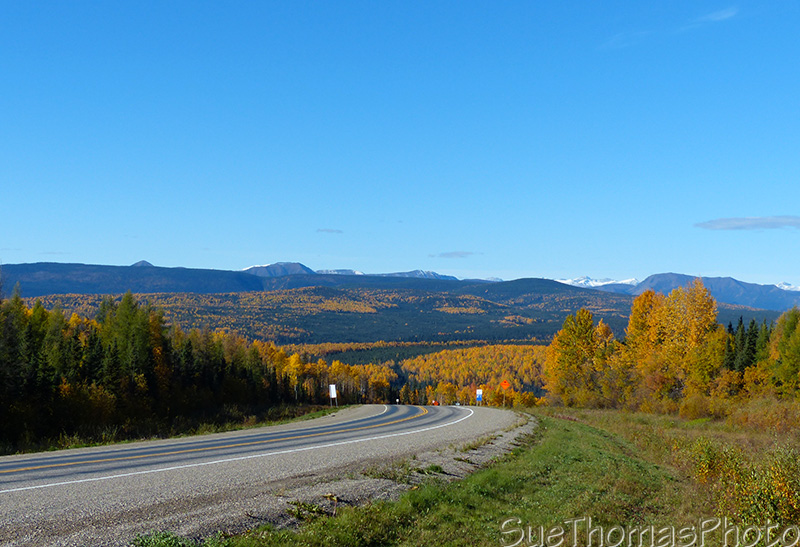 Alaska Highway with fall colours