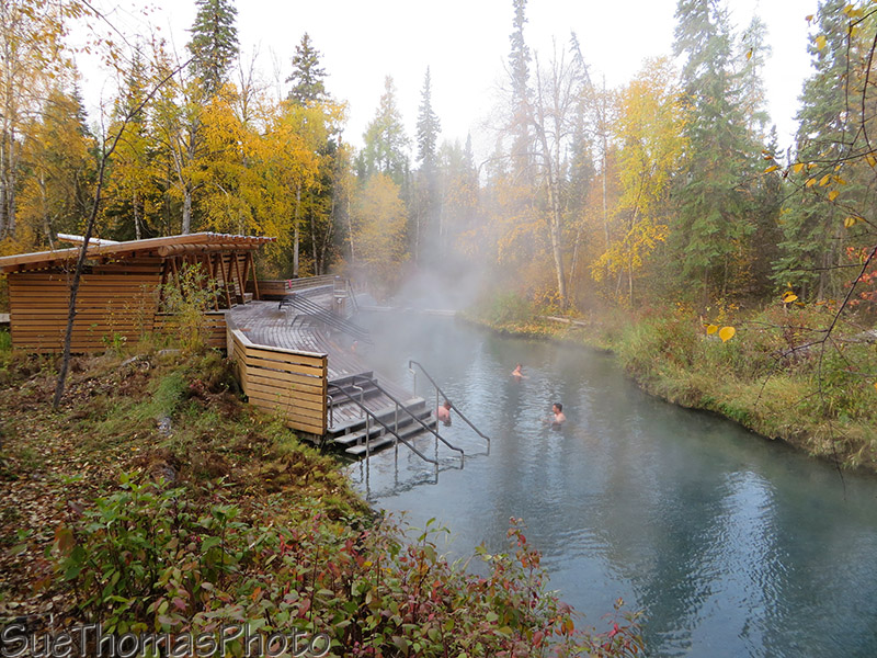 Liard Hotsprings pool