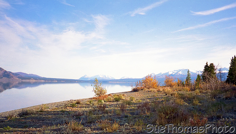 Kluane Lake shoreline