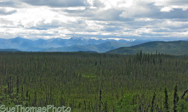 View from Alaska Highway