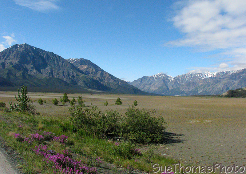 Slims River flats at Kluane Lake