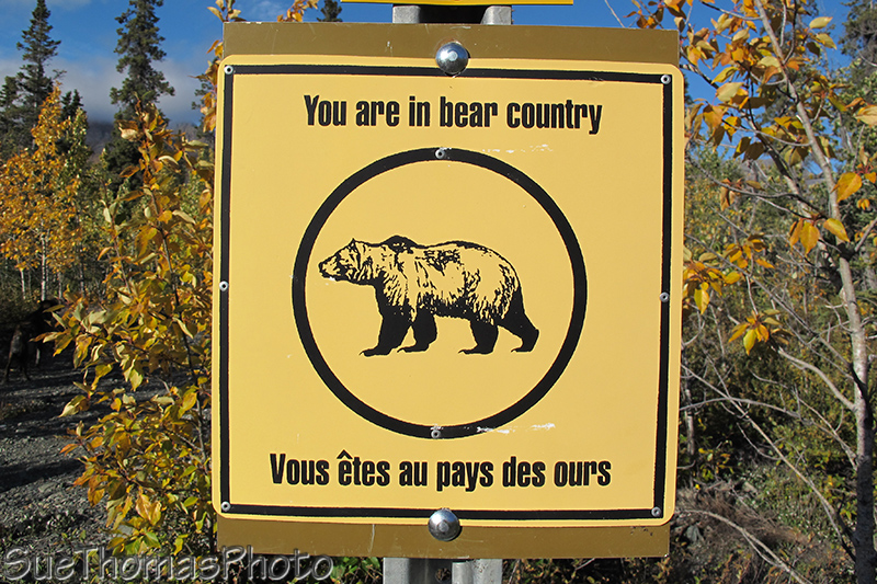 You are in Bear Country sign