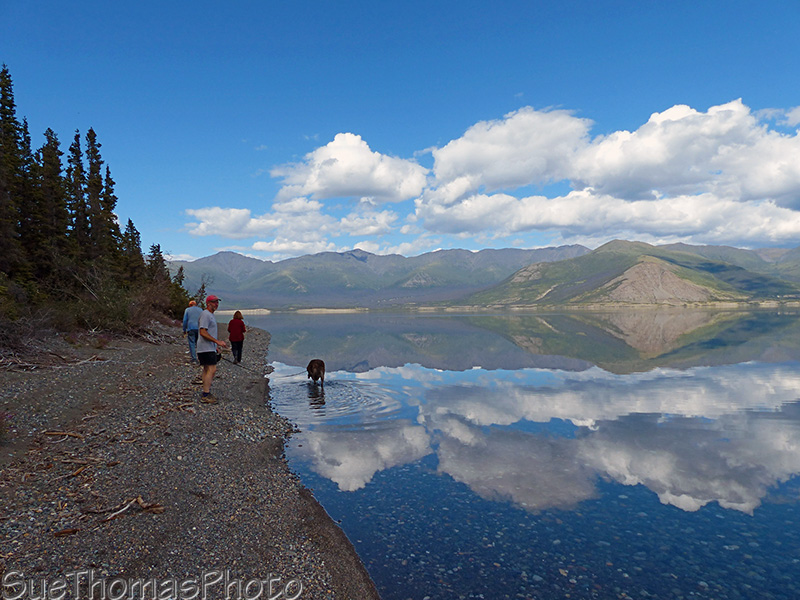 On the beach at Kluane Lake