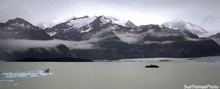 View at Alsek Lake