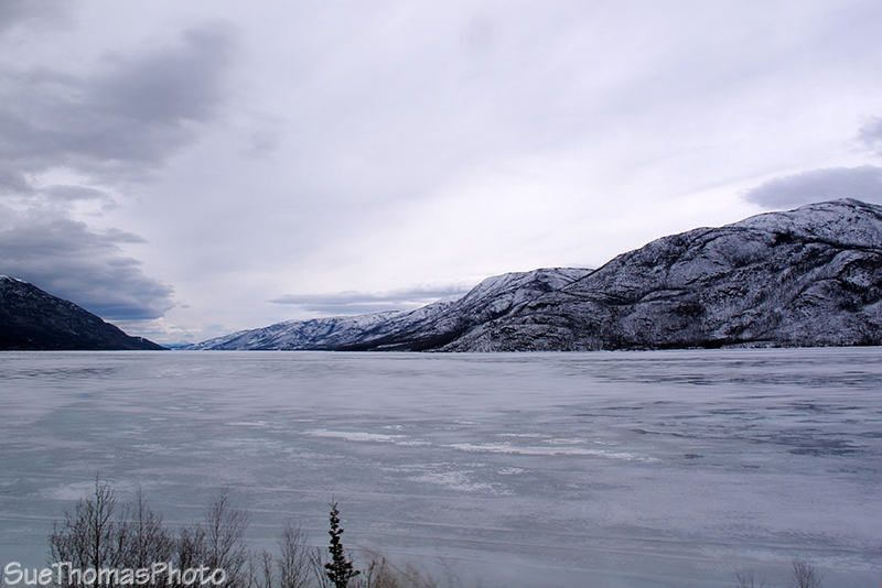Little Salmon Lake in Yukon