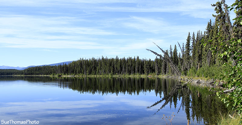 At Sidney Lake in Yukon on the South Canol Road