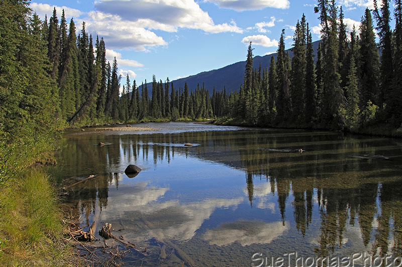 Rose River on South Canol in Yukon