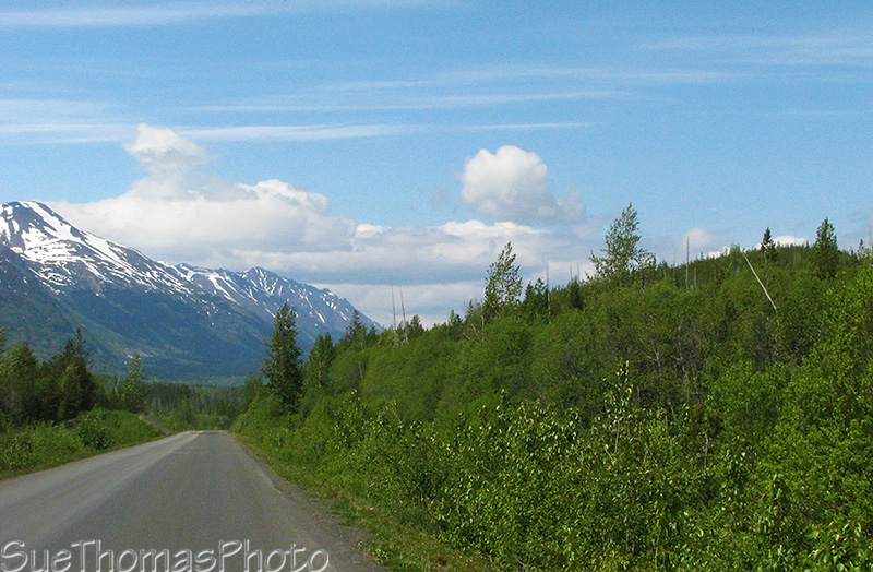 Northbound on the Cassiar Highway, BC