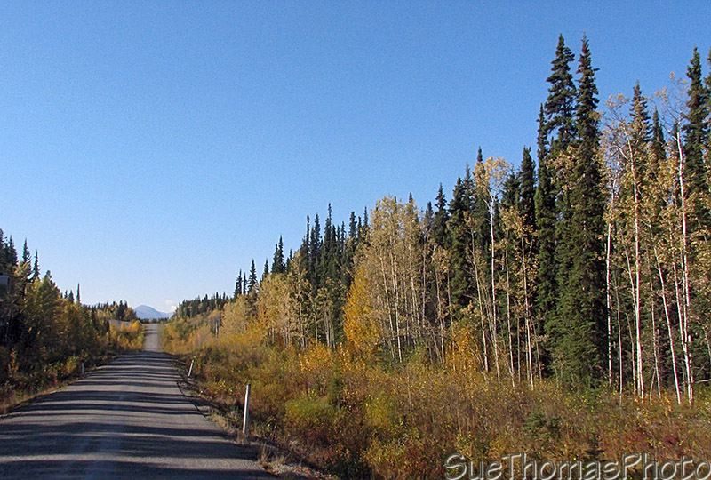 Cassiar Highway - British Columbia