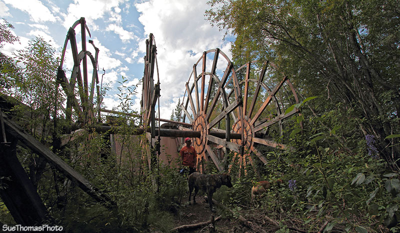 Paddle wheel graveyard near Dawson City