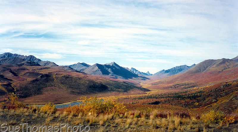 Tombstone Mountain, Dempster Highway, Yukon