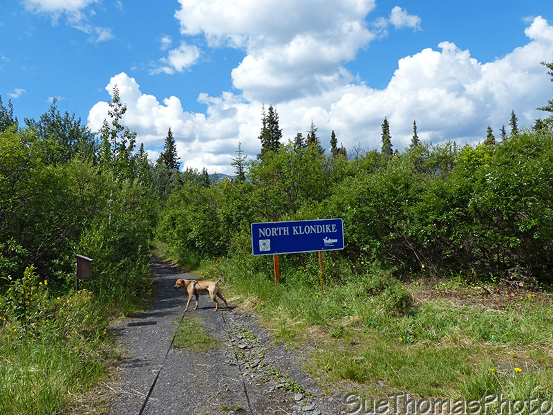 North Klondike River hike