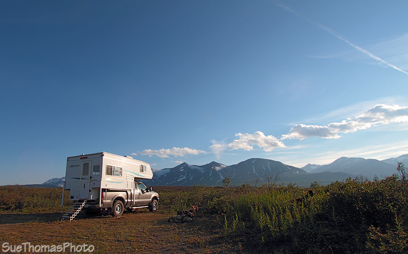 Haines Hwy campsite
