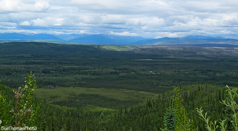 Tintina Trench in Yukon
