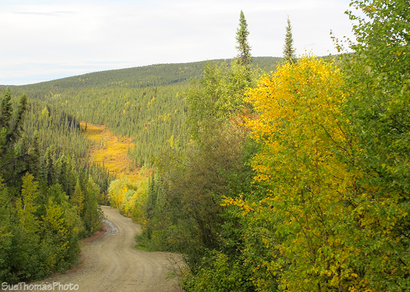 Ethel Lake Road in Yukon