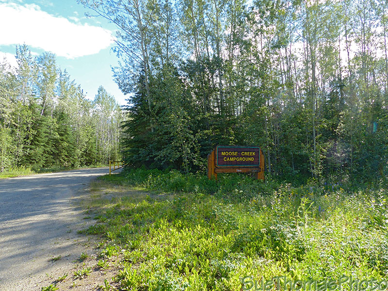 Moose Creek campground in Yukon