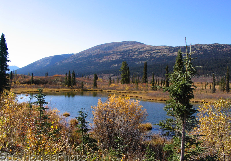 Lake alongside the Nahanni Range Road in Yukon