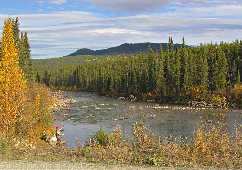 Fishing in Dolly Varden Creek, Nahanni Range Road, Yukon