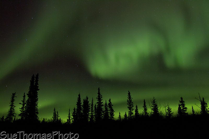 Northern Lights - Aurora Borealis in Yukon