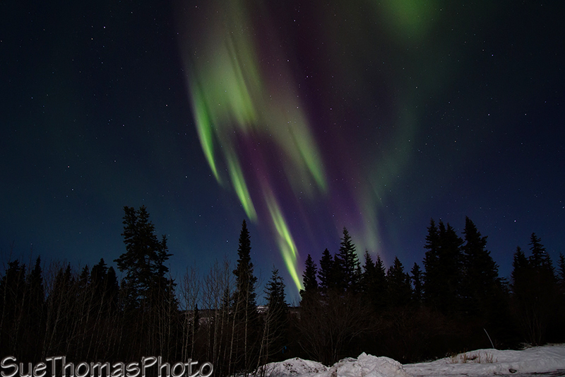 Lots of colour in the northern lights