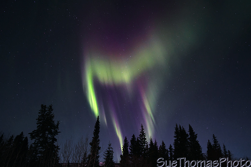 Changing shapes fast - northern lights