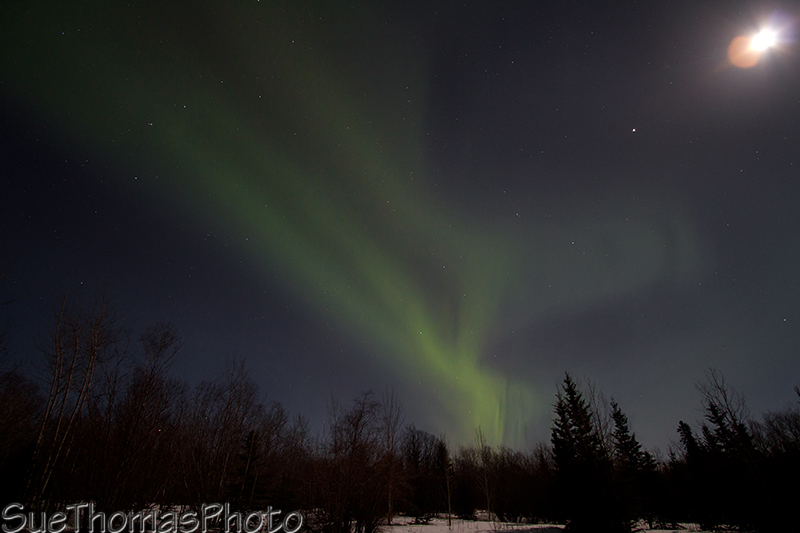 Aurora with moon glare on the lens