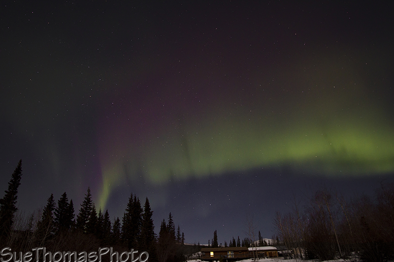 A streak of northern lights