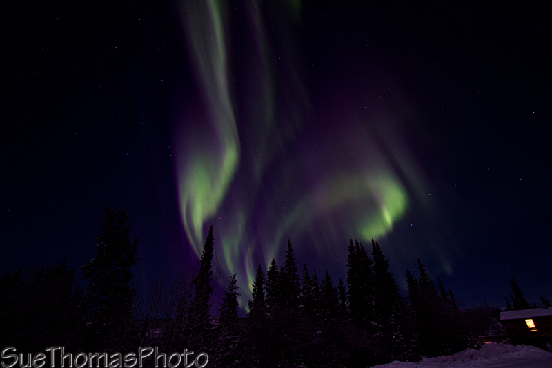 Northern lights to the west
