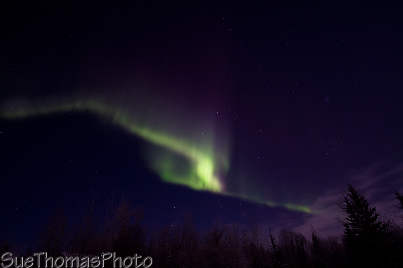 Aurora in they sky