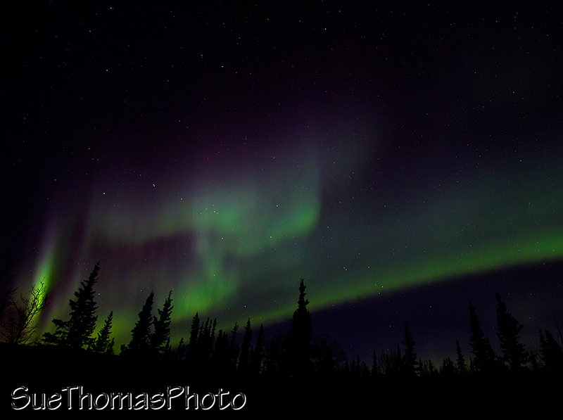 Northern Lights seen from the Ibex Valley in Yukon