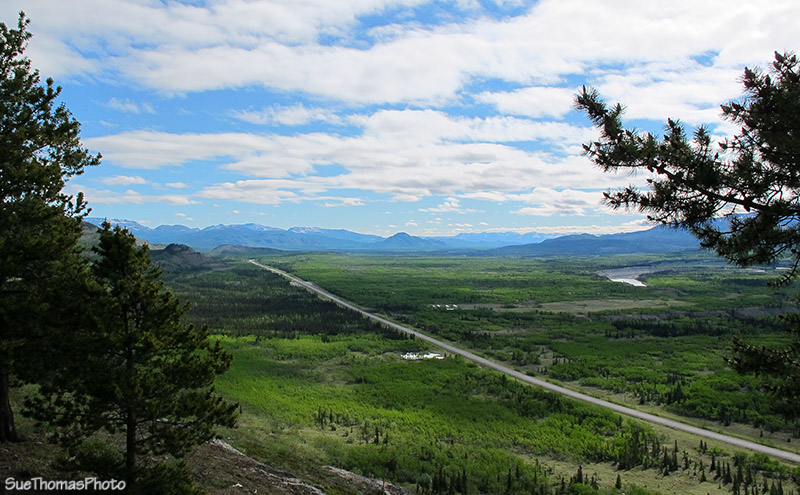 Spring in the Ibex Valley, Yukon - Alaska Highway too